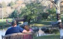 Families love relaxing by Reflection Pond.