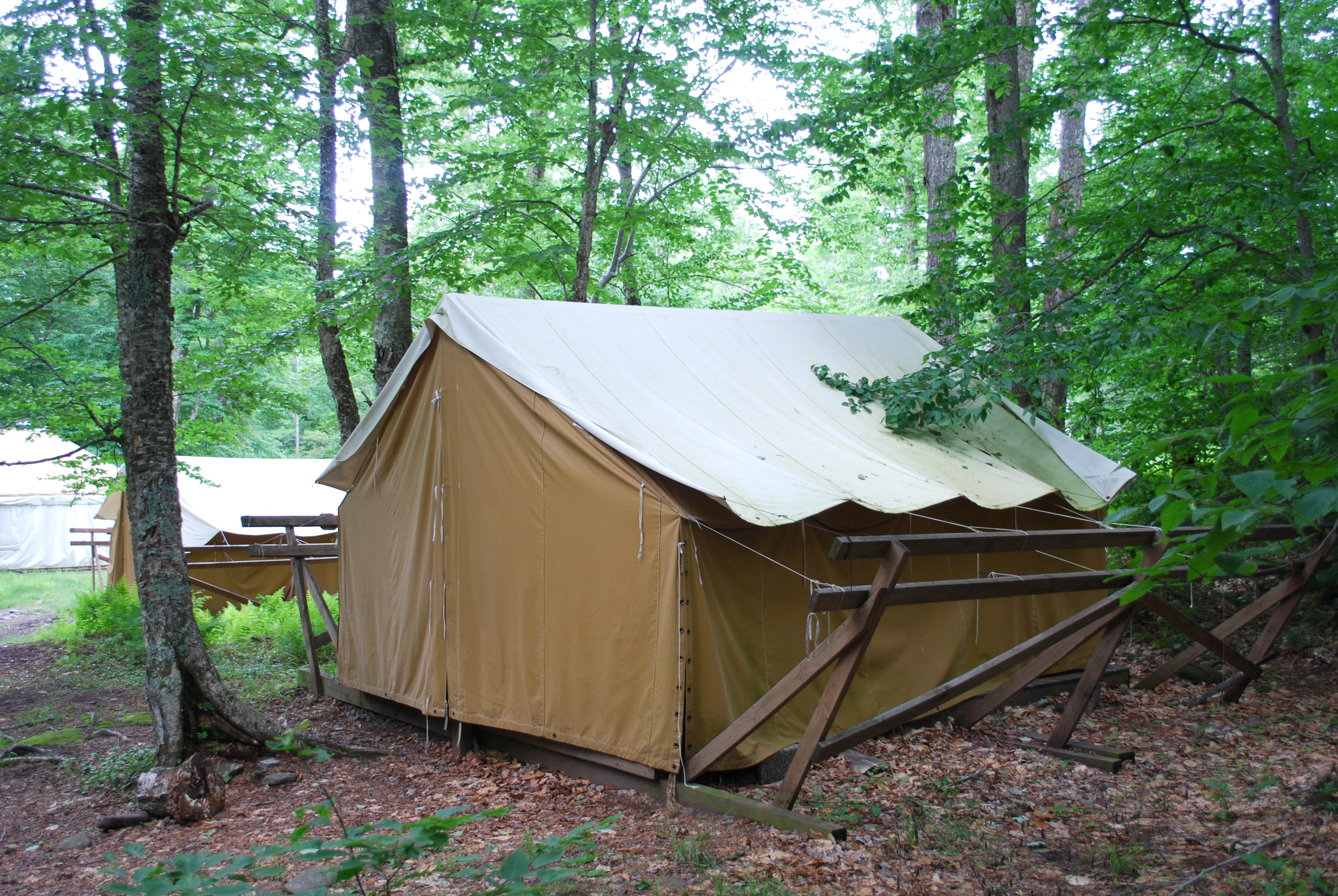 Platform Tents