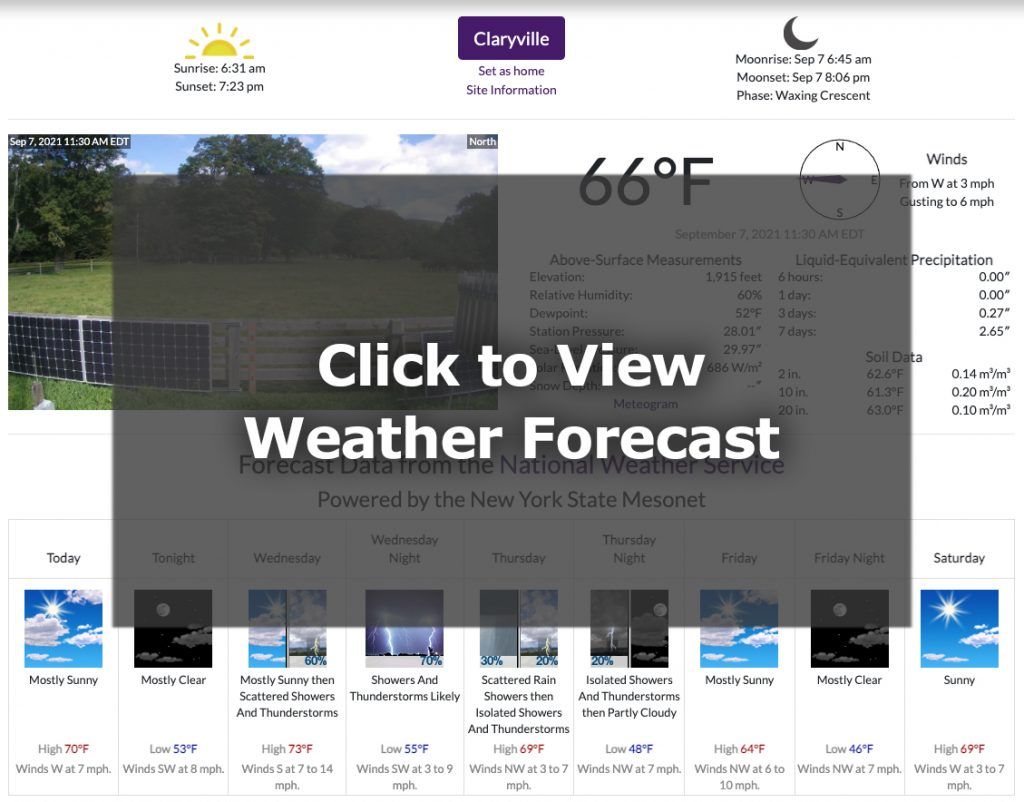 weather station site